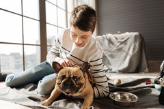 Enigmatical dog pricking up his ears Stock Images