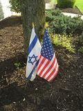 Enigt står vi med Israel Royaltyfri Foto