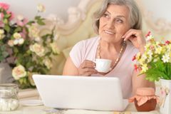 Enior kvinna som arbetar med bärbara datorn Royaltyfria Bilder