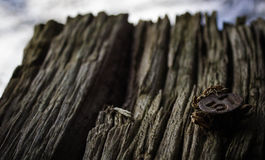 Enjeu en bois avec le numéro 57 Photographie stock libre de droits