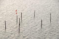 Enjeux de pêche photographie stock