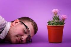 Enjoing erstaunlicher Kaktus des hübschen Mannes Minimales kreatives stillife Natürliches Konzept Stockbilder