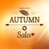 Enjoy Autumn Background. EPS 10 Royalty Free Stock Photography