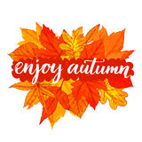 Enjoy autumn - inspirational calligraphy on banner Royalty Free Stock Photography