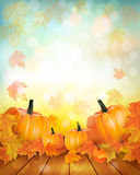 Enjoy autumn sales background with colorful leaves. Royalty Free Stock Photos