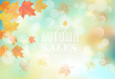Enjoy autumn sales background with colorful leaves. Stock Photo