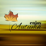 Enjoy autumn Royalty Free Stock Images