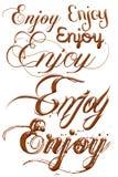 Enjoy chocolate text isolated on white background Stock Images