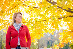 Enjoy the Fall With Me Stock Images