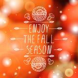 Enjoy the Fall Season - typographic element Royalty Free Stock Photos