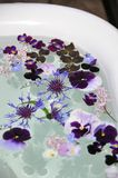 Enjoy flowers in your bath tub. Garden life during summer. Lovely way to calm down Stock Photo