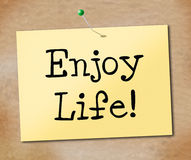 Enjoy Life Indicates Jubilant Happiness And Cheerful Royalty Free Stock Images