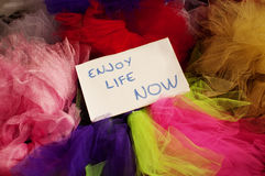 Enjoy life now Royalty Free Stock Photos