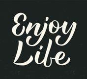 Enjoy life lettering Royalty Free Stock Image