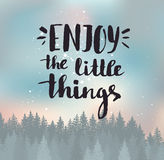 Enjoy the little things. Modern vector calligraphy. Handwritten ink lettering. Stock Image