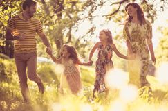Enjoy in nature and fresh air royalty free stock photo