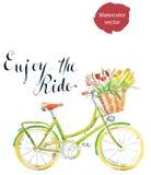Enjoy the ride Royalty Free Stock Photos