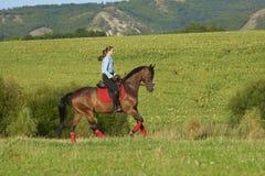 Enjoy riding horse Royalty Free Stock Photos