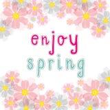 Enjoy spring pink cherry blossom Stock Photography