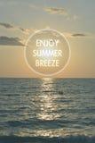 Enjoy summer breeze. Royalty Free Stock Photo