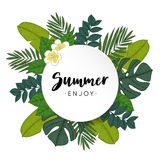 Enjoy Summer greeting card, invitation with hand drawn palm and monstera leaves and frangipani flowers. Tropical jungle Stock Image