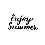 Enjoy Summer Handwritten Lettering. Vector Illustration of Brush Pen Calligraphy Isolated over White Background Stock Photos