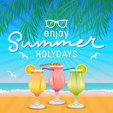Enjoy summer holydays background hand letter. Stock Photos