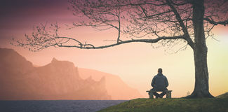 Enjoy the sunset above the sea. Instagram stylisation. Man sitting on a wooden bench under the big tree and enjoy colorful sunset above the sea. Instagram Stock Image