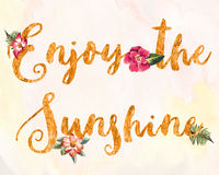 Enjoy the Sunshine Royalty Free Stock Photo