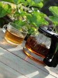 Enjoy tea time in garden Royalty Free Stock Photos