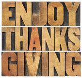 Enjoy Thanksgiving. Isolated text in vintage letterpress wood type blocks scaled to a rectangle shape
