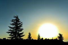 Enjoy a tremendous sunrise Royalty Free Stock Photography