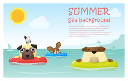 Enjoy tropical summer holiday with little dog Royalty Free Stock Photography
