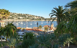 Villefranche bay through the garden Royalty Free Stock Images