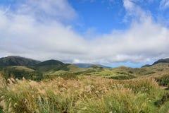 Enjoy view of nature around Qingtiangang Grassland in Yangmingshan mountain. Royalty Free Stock Photography