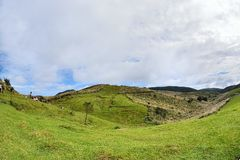 Enjoy view of nature around Qingtiangang Grassland in Yangmingshan mountain. Stock Photography