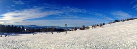 enjoy in winter Stock Image