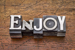 Enjoy word in metal type Stock Photography