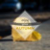 Enjoy your autumn Royalty Free Stock Photo