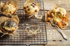 Enjoy your fresh vanilla muffins Royalty Free Stock Photo