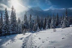 Enjoy your journey to Tatras Mountains in winter Stock Images