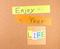 Enjoy your life Royalty Free Stock Photo