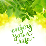 Enjoy your life. Poster with hand drawn lettering, vector illustration Royalty Free Stock Photos