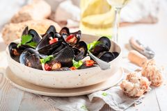 Enjoy your mussels served with tasty wholemeal bread stock photo