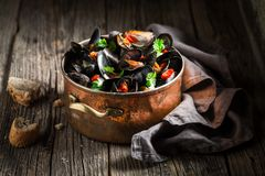Enjoy your mussels served with wholemeal bread Royalty Free Stock Photo