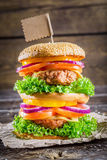 Enjoy your tasty double-decker hamburger Royalty Free Stock Photos
