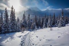 Enjoy your winter journey to Tatras Mountains Stock Photo