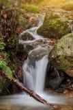 Enjoyable autumn landscape with a brook. Monchique Portugal Stock Photos