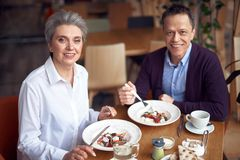Elegant aged man and woman having dinner in cafe. Enjoyable meetings. Waist up portrait of aged elegant style happy lady and gentleman having dinner together in stock images