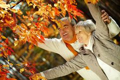 Enjoying autumn Royalty Free Stock Photo